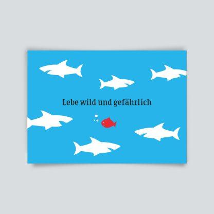Maritime Postkarte. Lebe wild und gefährlich