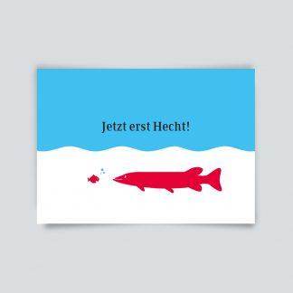 Maritime Postkarte. Jetzt erst Hecht